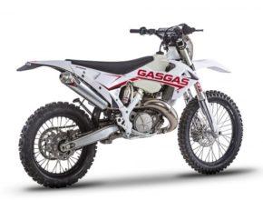 GasGas_ECRanger_-_1.jpg